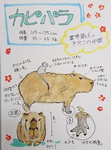 東武動物公園(動物編)